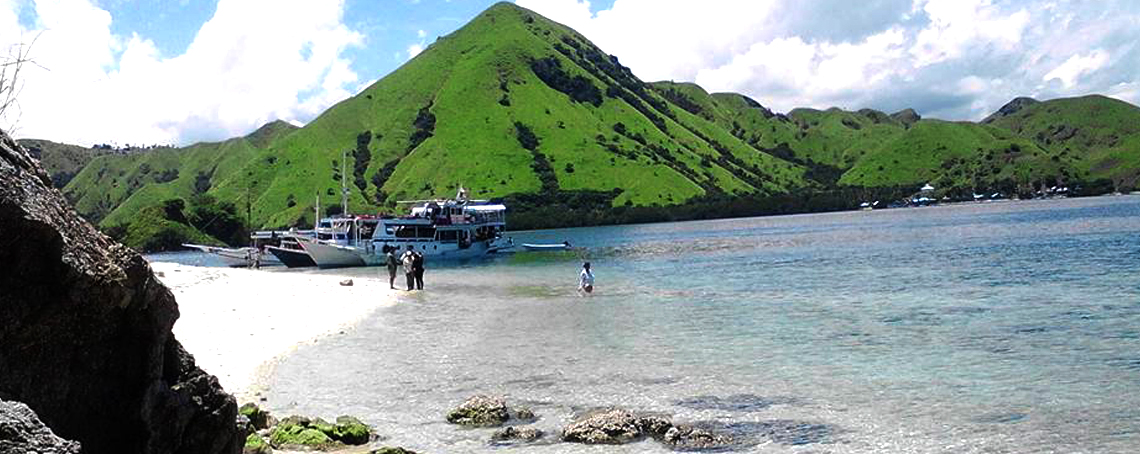 komodo tours,dragons,trekking