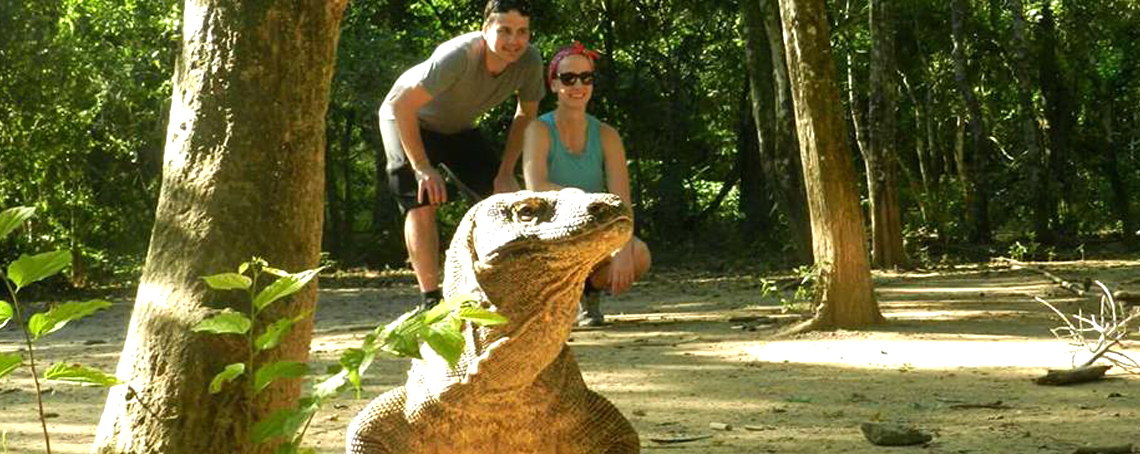 komodo,flores,adventure,tour