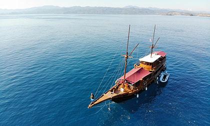 open trip komodo island,komodo sharing trip,komodo group tours