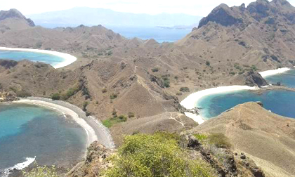 komodo,trekking,tours,live on boat,komodo dragon,snorkeling trip