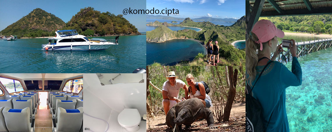 dailly tour komodo island by fast cruise,discover komodo dragons,snorkeling at pink beach,trekking padar island,see manta ray,fast boat to komodo island,daily tour from labuan bajo komodo island