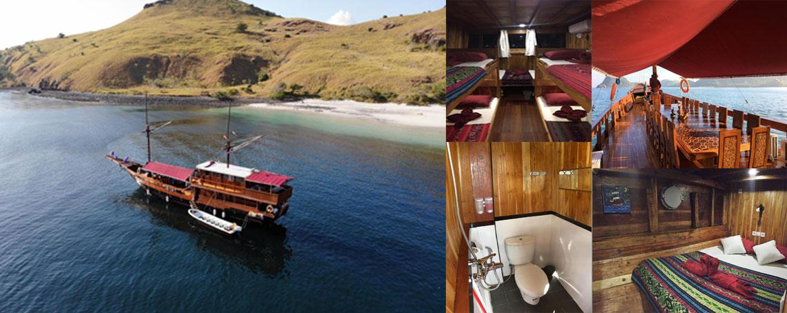 open trip,komodo tour,sharing tour,group tour,komodo island