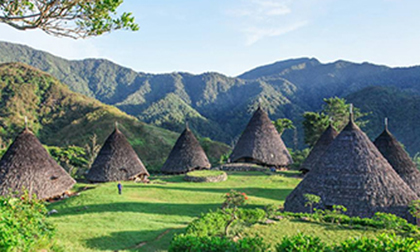 komodo tour package,komodo tour from lombok,wae rebo village, komodo tour from labuan bajo