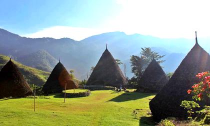 wae rebo village,komodo dragons,cara village,tour wae rebo,labuan bajo,mirror stone cave,rinca island